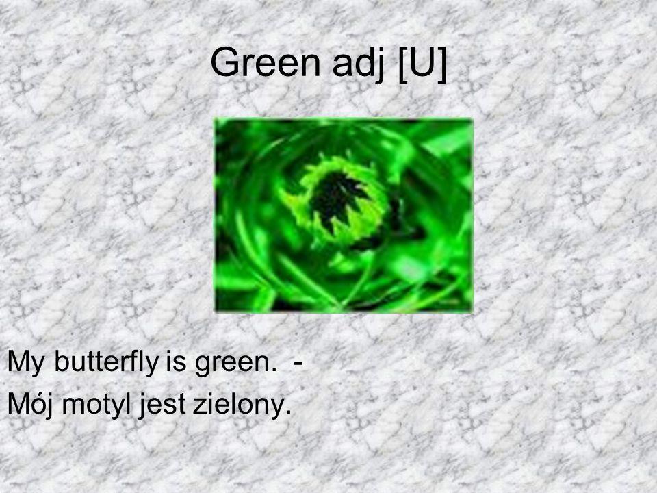 Green adj [U] My butterfly is green. - Mój motyl jest zielony.
